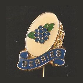 1967 Canterbury-Bankstown Berries NSWRL The Sun Pin Badge
