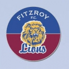 2012 Fitzroy Lions AFL First 18 Trofe Pin Badge