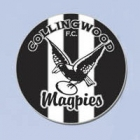 2012 Collingwood Magpies AFL First 18 Trofe Pin Badge