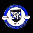 2012 Canterbury Bankstown Bulldogs NRL Minor Premiers Pin Badge bb