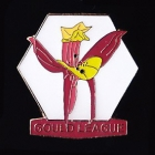 2011 Gould League Victoria Member Badge Pin