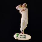 2006-07 Shane Warne Herald Sun Pin Badge