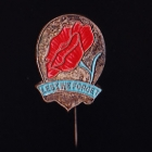 Rose Day Stick Pin 10s-$1