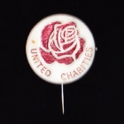 Rose Day Stick Pin 50c