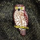 2017 BirdLife Powerful Owl Pin Badge