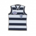 2011 Geelong Cats AFL Jersey Trofe Pin Badge