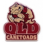 2005 QLD Canetoads State of Origin EAB Pin Badge