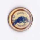 1994 Penrith Panthers NSWRL Silver Butterfly Pin Badge