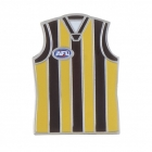 2011 Hawthorn Hawks AFL Jersey Trofe Pin Badge