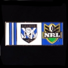 2010 Canterbury Bankstown Bulldogs NRL Home Pin Badge