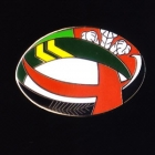 2010 RL Four Nations Logo Pin Badge